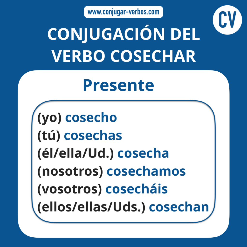Conjugacion del verbo cosechar   Conjugacion cosechar
